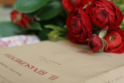 flowers book rinascimento
